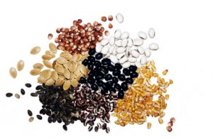mixed dried seeds