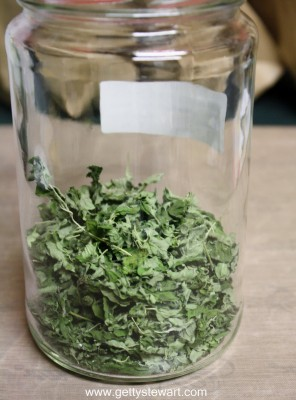 dried oregano in a jar