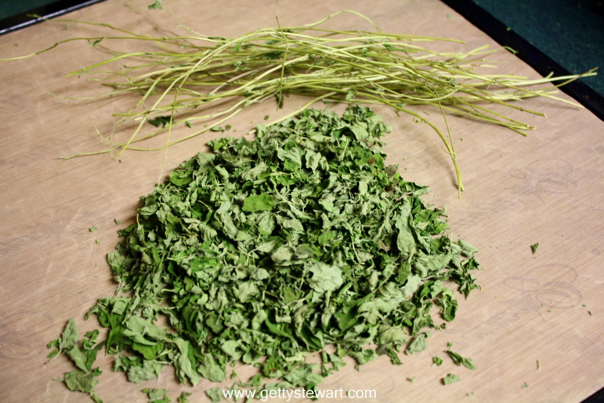 How to Dry and Use Oregano
