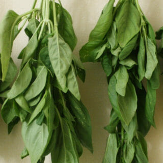 How to Air Dry Basil