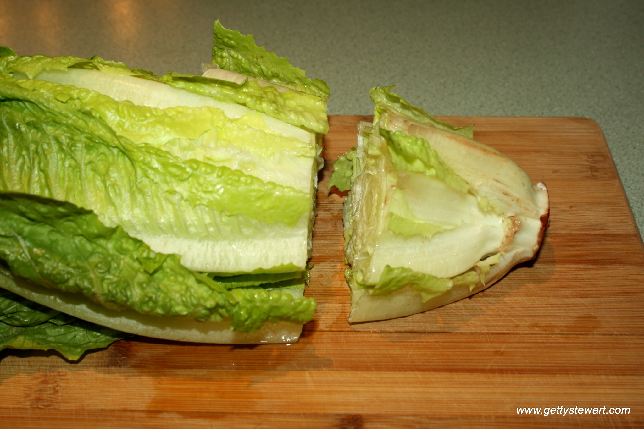 How To Regrow Romaine Lettuce From The Stem Gettystewart