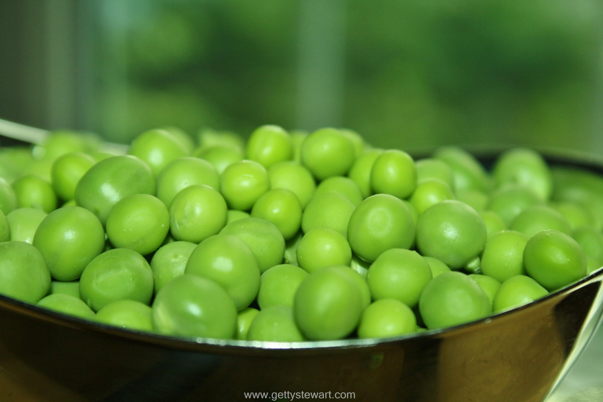 How to Blanch and Freeze Fresh Garden Peas