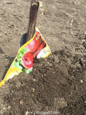 beet marker
