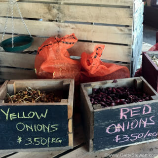 How to Plant Onions and Get Big Bulbs