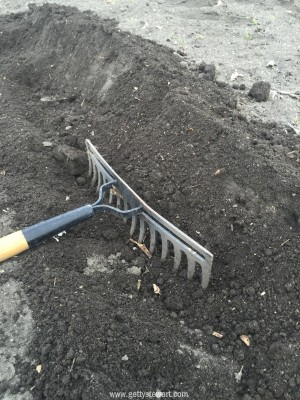 roughing up the soil
