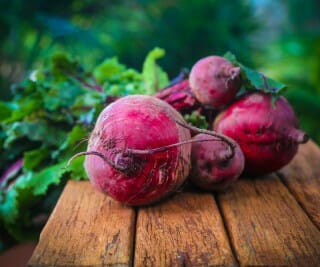 How to Plant Beets in the Garden