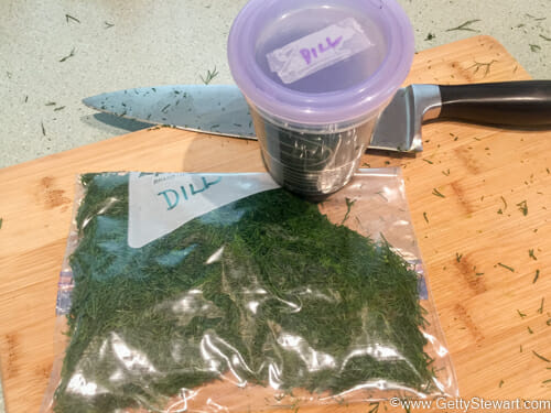 freeze dill in bag or container