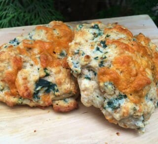 Stinging Nettle and Cheese Biscuit