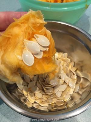 picking pumpkin seeds l - watermarked