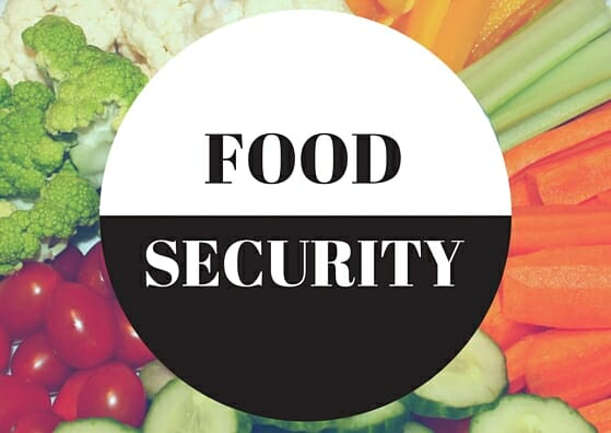 Four Food Security Initiatives in Winnipeg