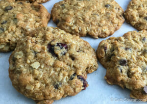cranberry choco oat cookie