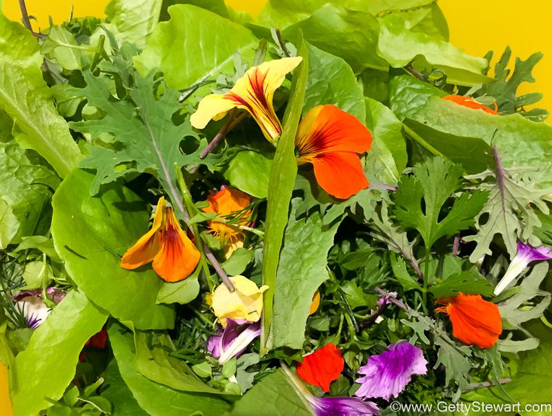 spring garden mix with kale