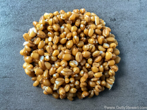 wheatberries cooked