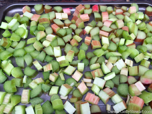 rhubarb on tray to freeze w
