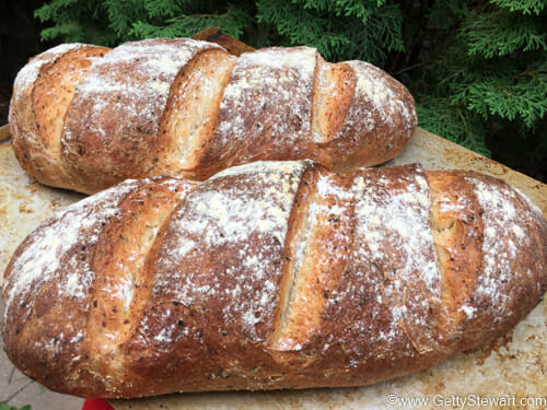 two baked loaves cottage cheese bread