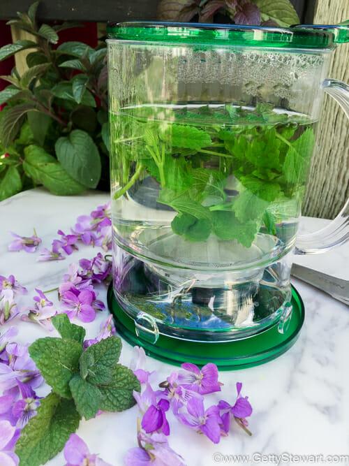 how to make sute tea