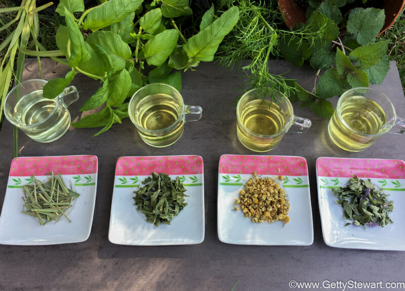 Favorite Herbs For Tea How To Grow