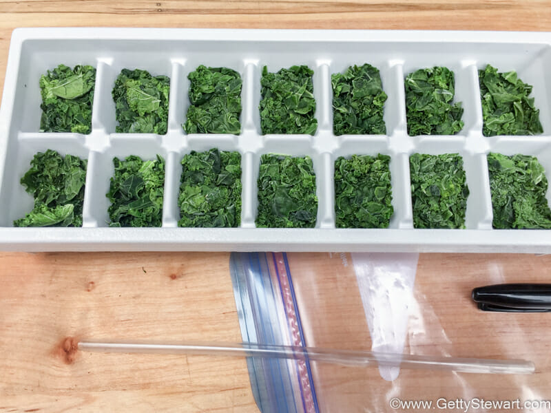 kale in ice cube tray